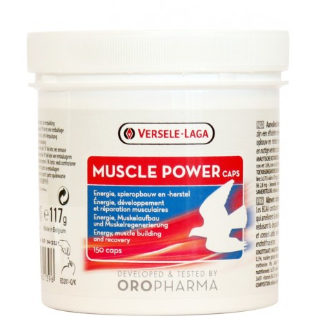 Muscle Power - мускулна сила с BCAA аминокиселини