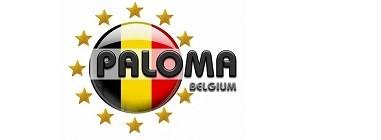 Хранителни добавки за гълъби PALOMA - Белгия