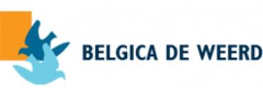 Хранителни добавки за гълъби Belgica De Weerd - Белгия